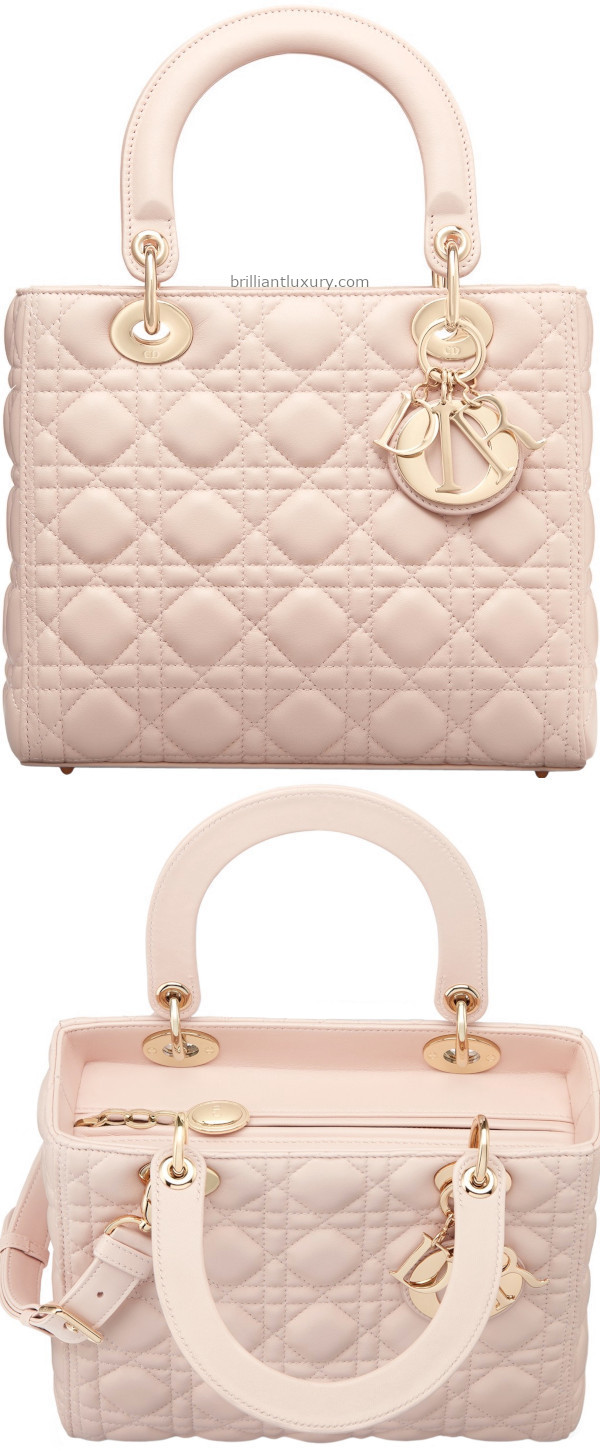 Powder Pink Dior Bag