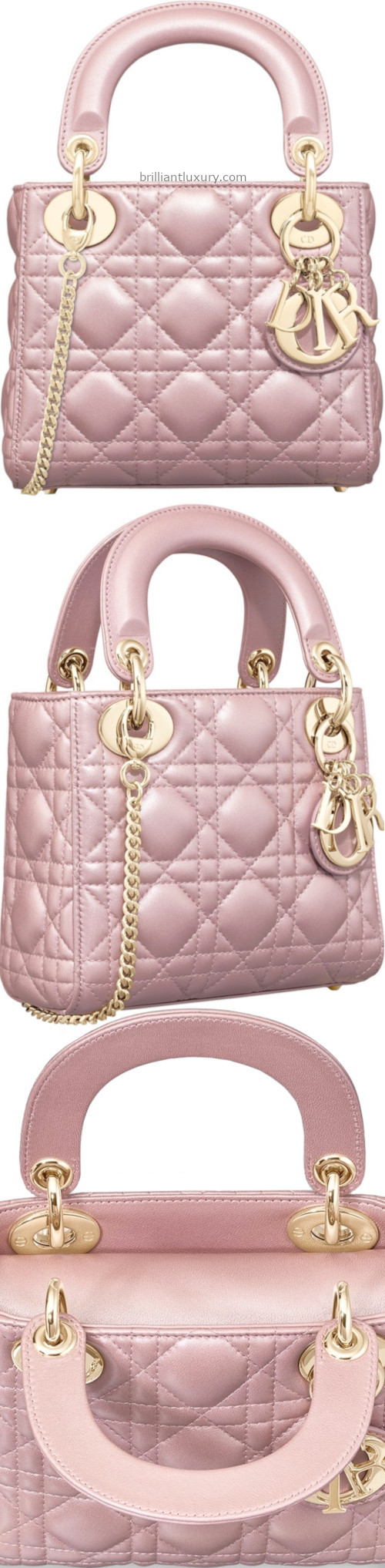 Lotus Pearly Dior Bag