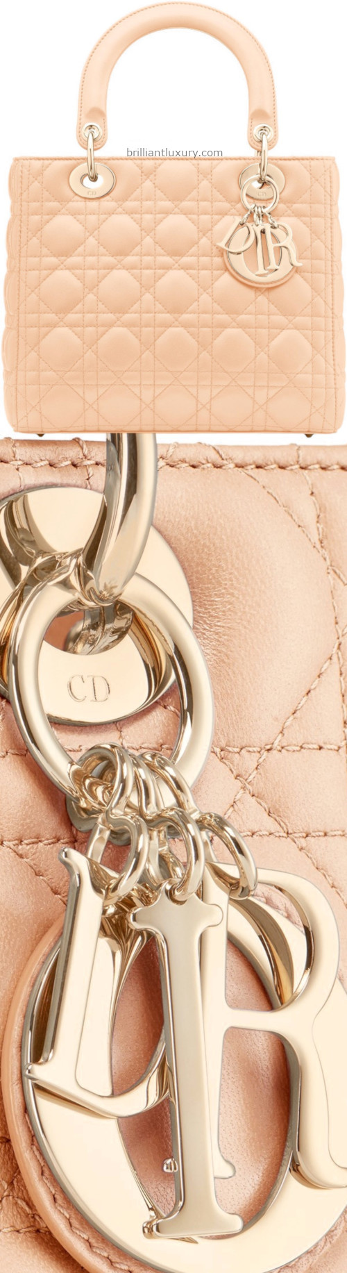 Skin Colored Dior Bag