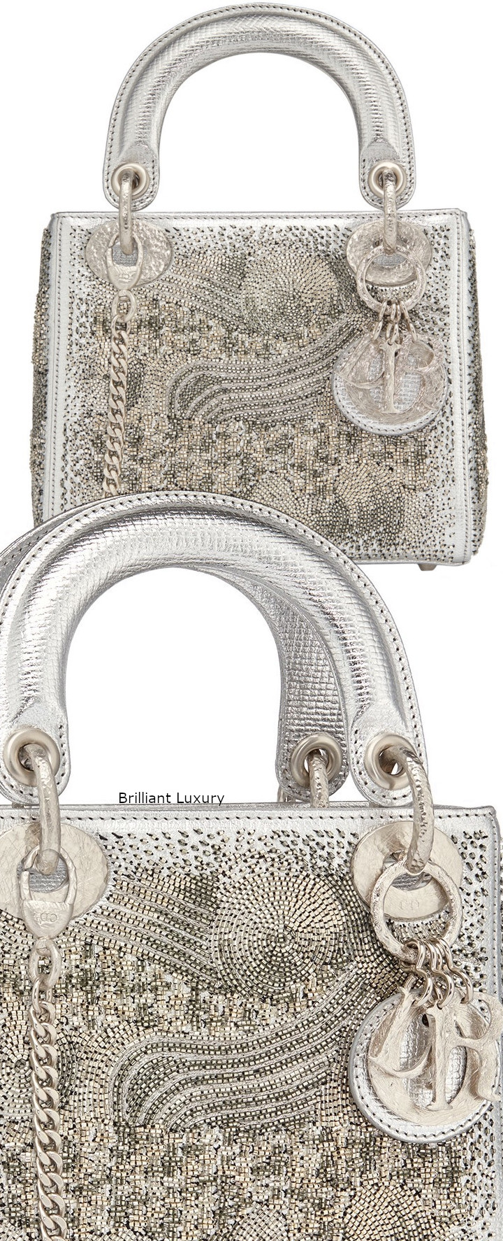 Brilliant Luxury│Lady DIOR Art Bag in silver color textured goatskin, embroidered with metallized tubes-hand-hammered silver tone metal charms, Designer Olga de Amaral