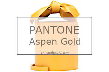 Brilliant Luxury│Pantone Fashion Color 2019│Aspen Gold│Bags
