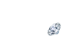 Brilliant Luxury│Logo