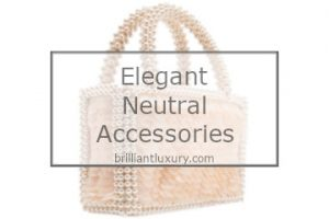 Elegant Neutral Accessories